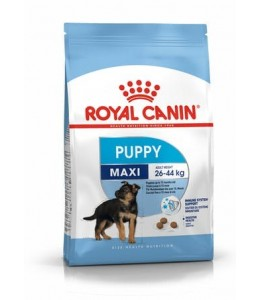 ROYAL CANE MAXI PUPPY KG.15