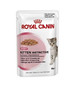 ROYAL GATTO KITTEN SALSA GR.85